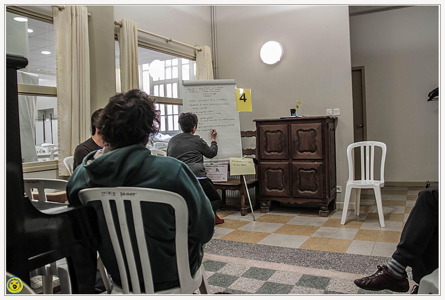 Mutualisation , premier forum ouvert à Annot