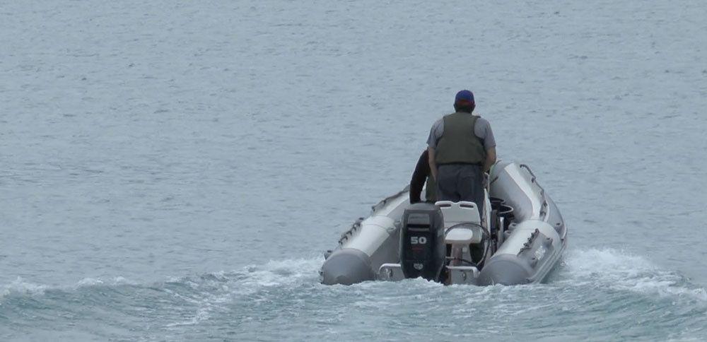 53 800 alevins de truite arc-en-ciel ont été répartis au cœur du lac de Castillon