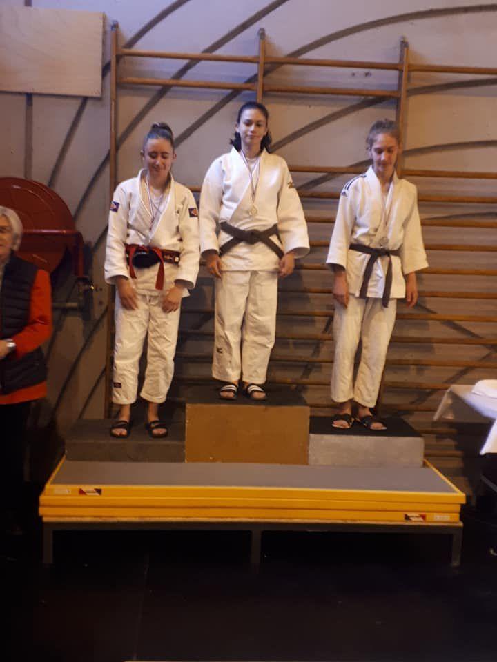 Saint André les Alpes: le club de judo se porte bien