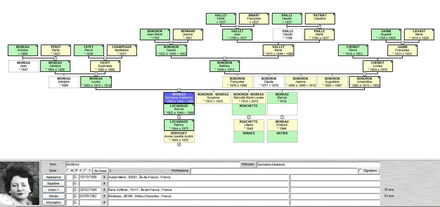 Partie d'arbre généalogique : branche ascendante de ma mère - Cliquer pour avoir cette vue en taille réelle.