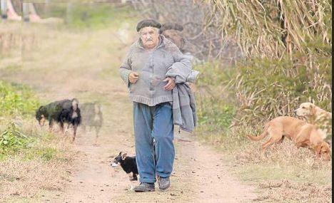 """Portrait  : Elections en Uruguay... On l'appelle """"PEPE"""""""