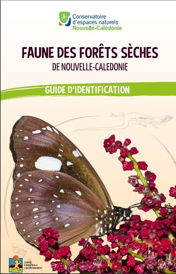 Un guide pour l'identification de la faune des forêts sèches : lumière sur les habitants de cet écosystème plein de richesses !