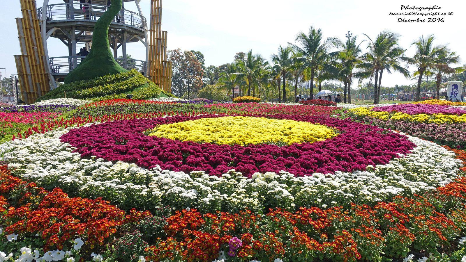 Festival des fleurs de Khon Kaen ( c'est déjà le printemps, tulipes et lys )