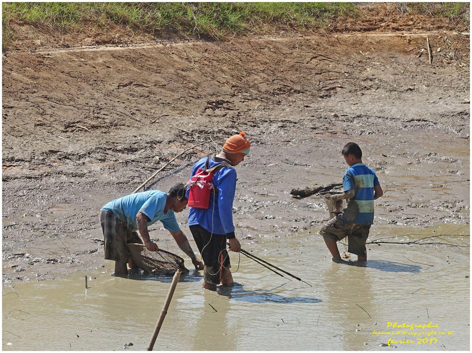 La pêche en Isaan 2ème partie (Thaïlande)