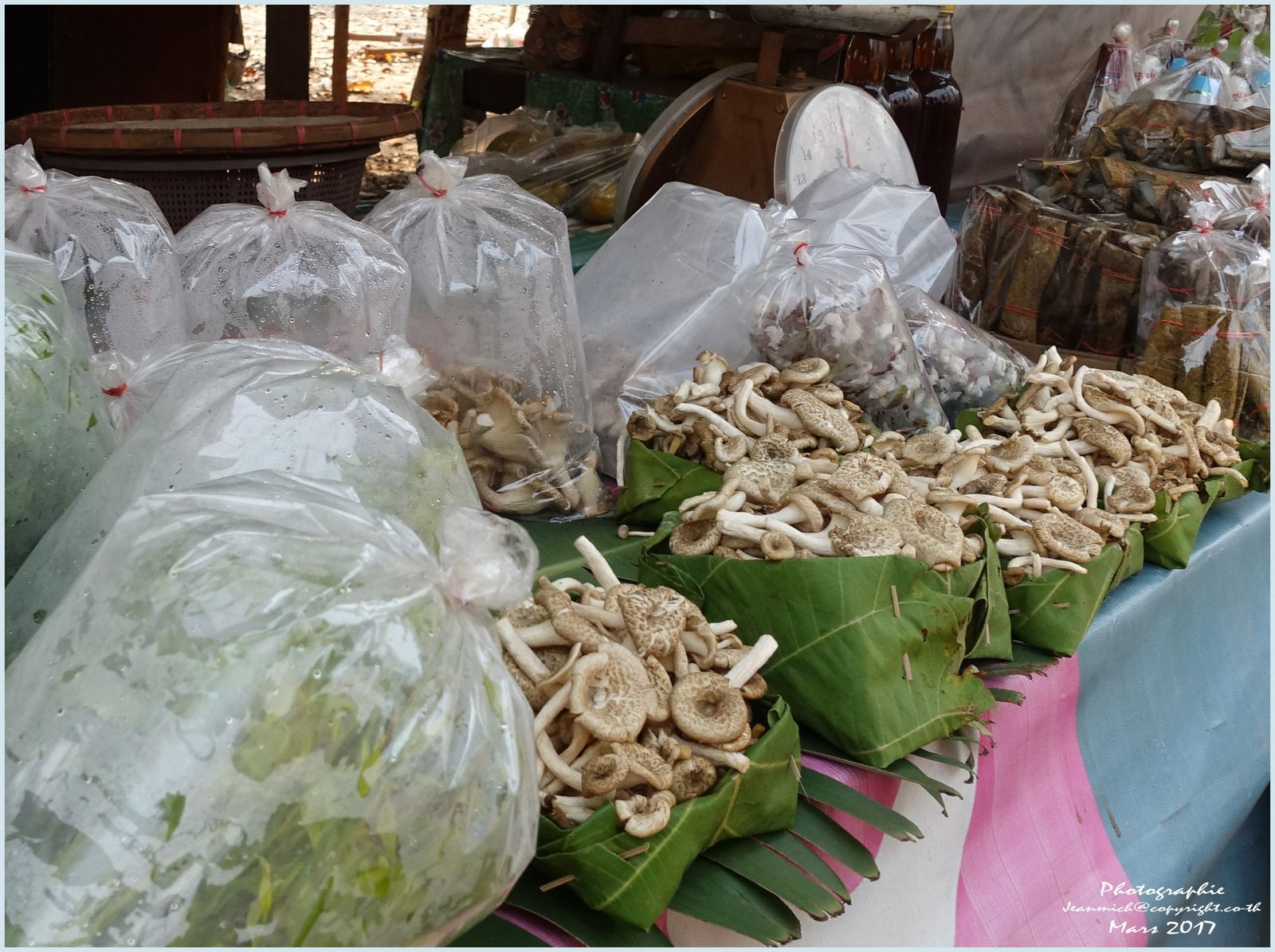 La route entre Sakhon Nakhon et Kalasin (Thaïlande, Isaan)