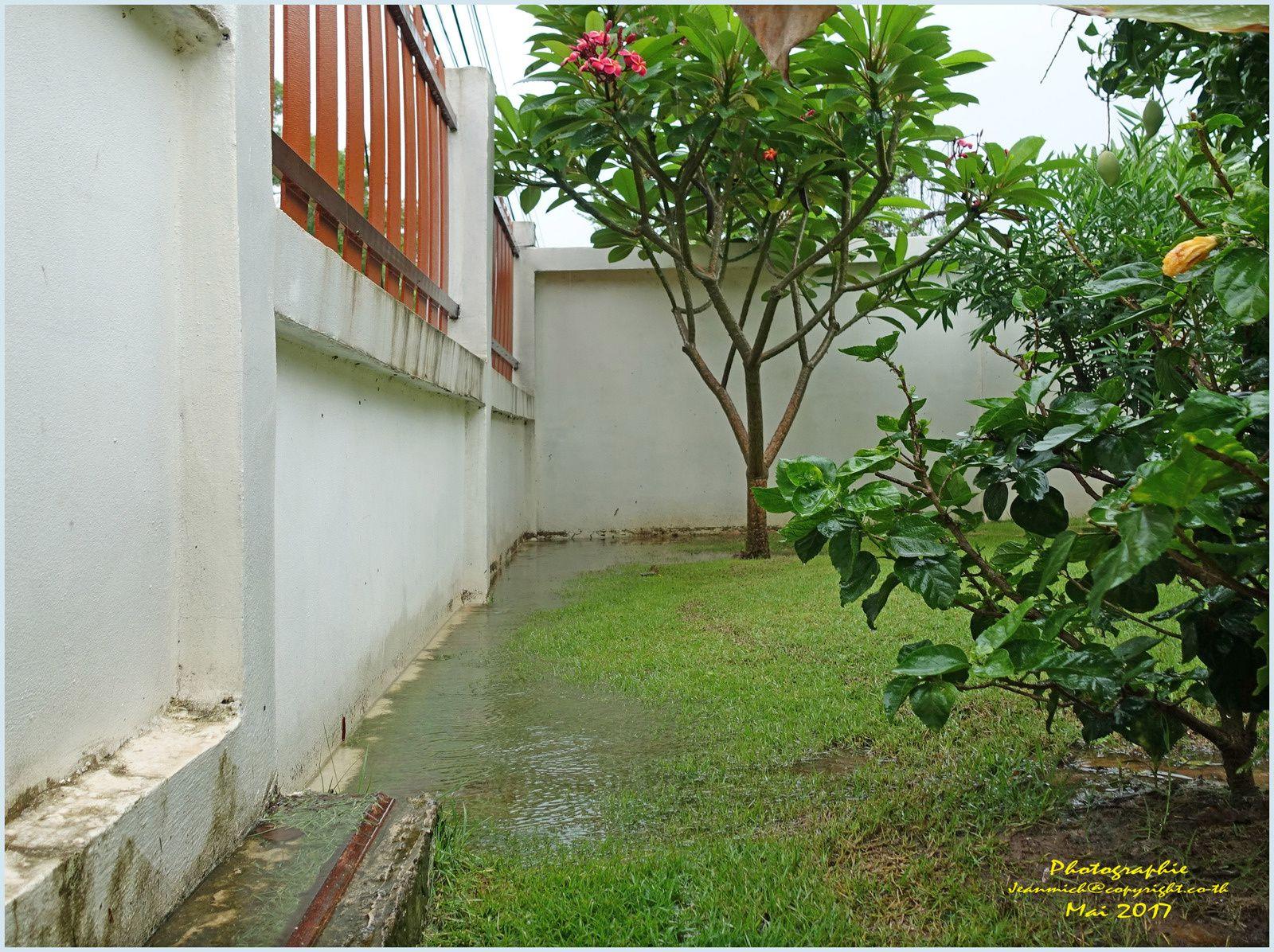 La mousson est bel et bien arrivée....(Thaïlande)