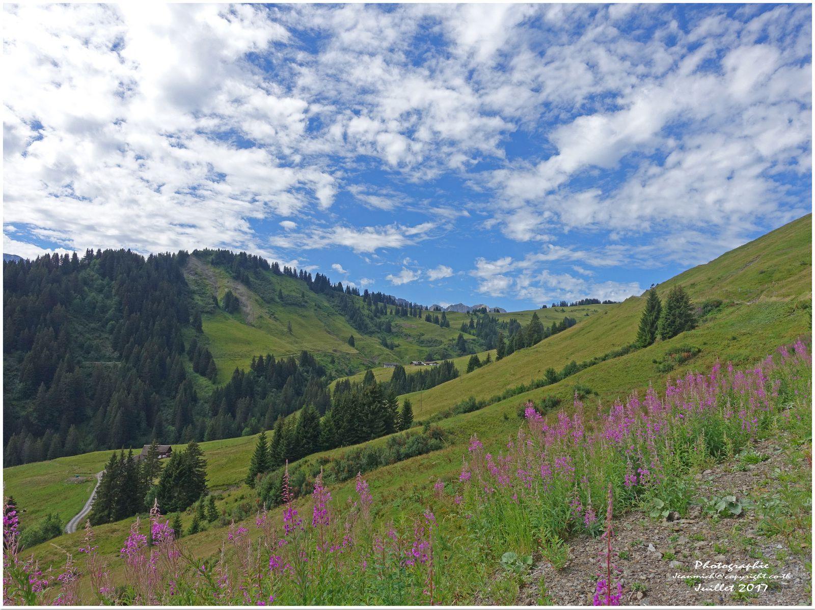Promenade à Champoussin (Monthey, Suisse)