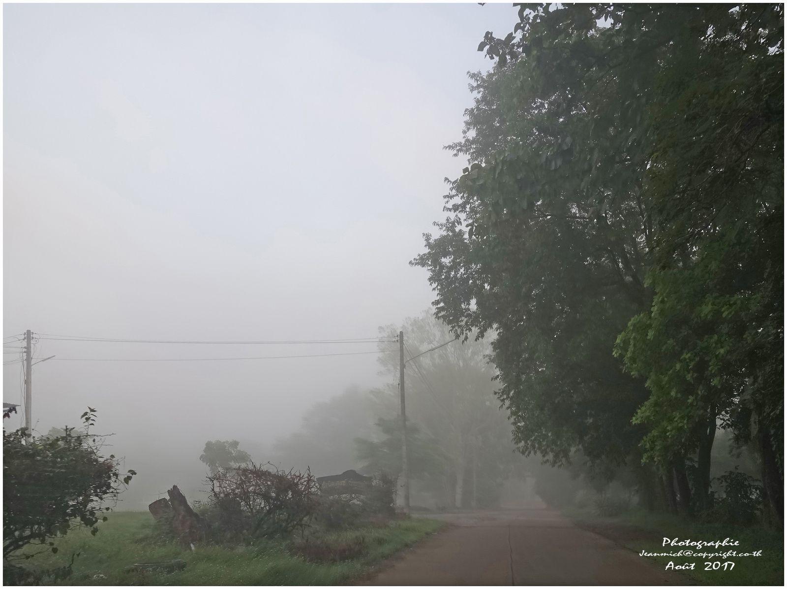 Matin sous le brouillard en Isaan (Thaïlande, Ubonratana Dam)