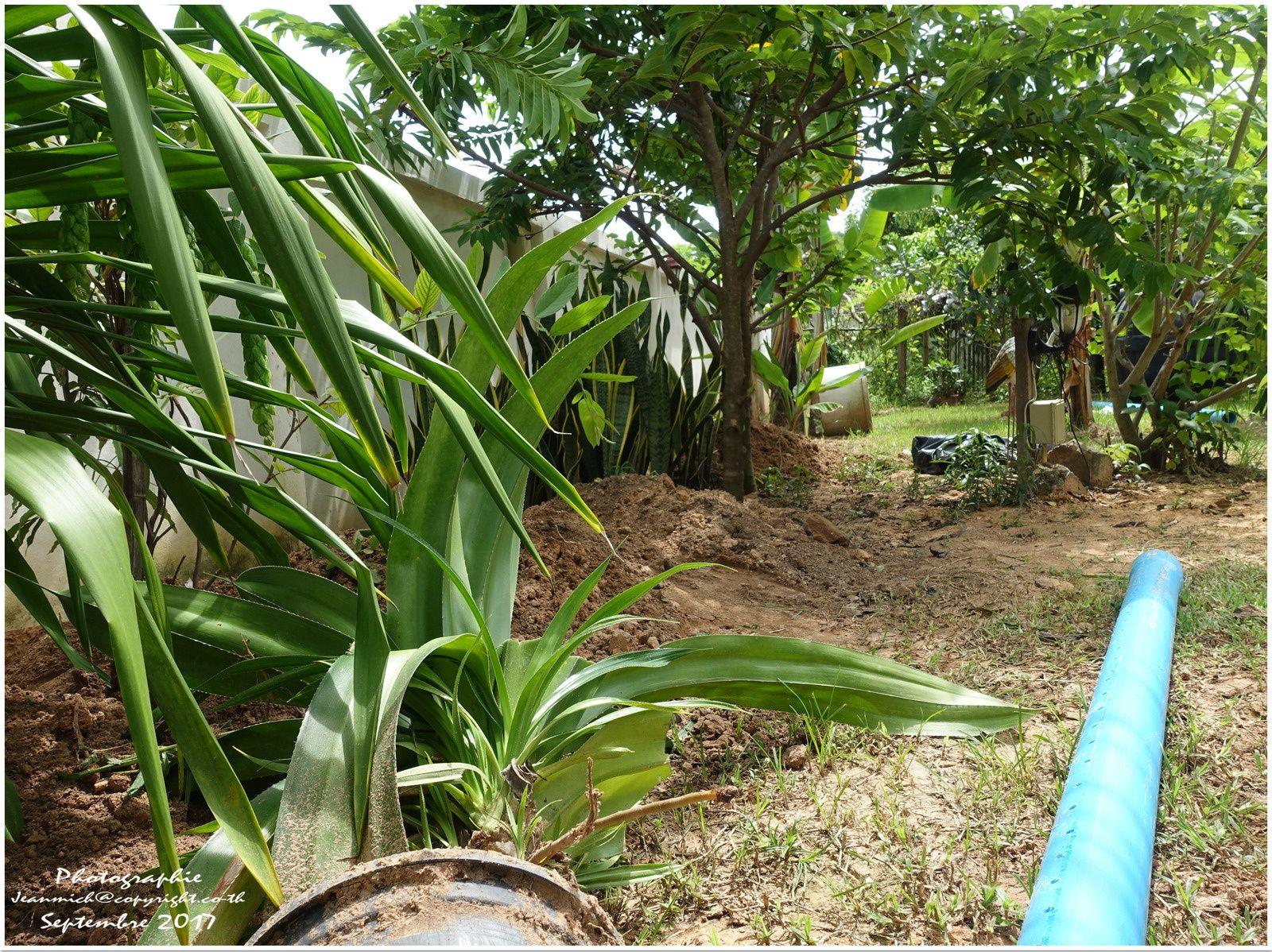 Suite des travaux de remise en état (Thaïlande, Isaan)