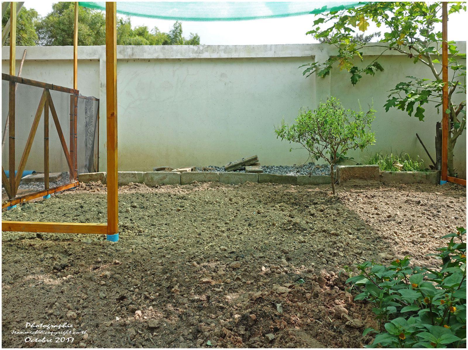 Le potager terminé (Thaïlande, Ubonrat)