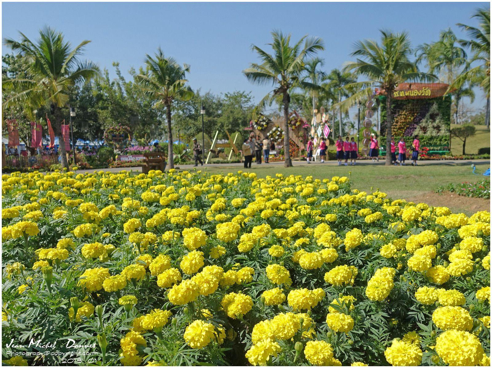Les floralies de Khon Kaen II (Thaïlande)