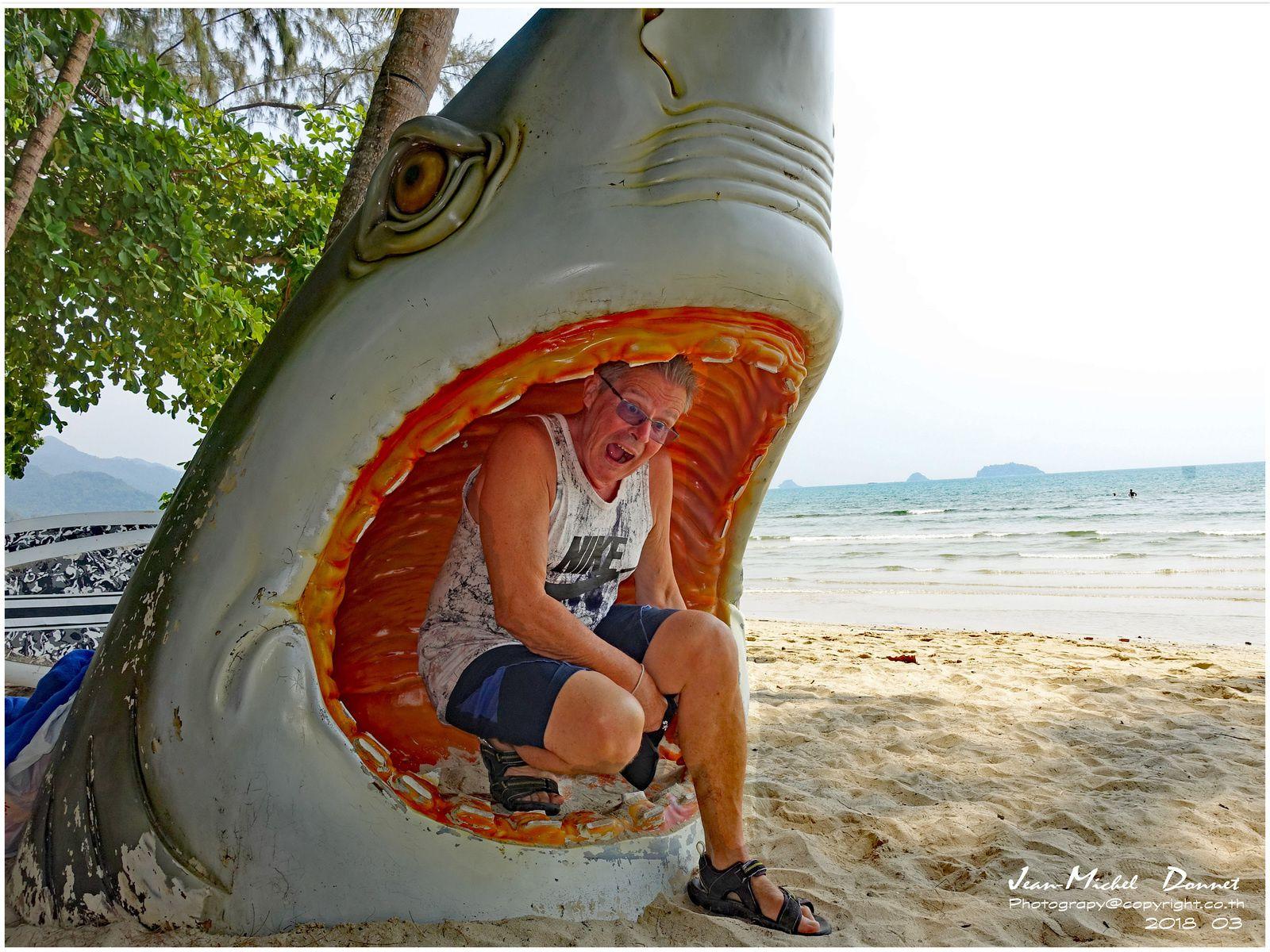 Une belle et agréable plage sur Ko Chang (Thaïlande)