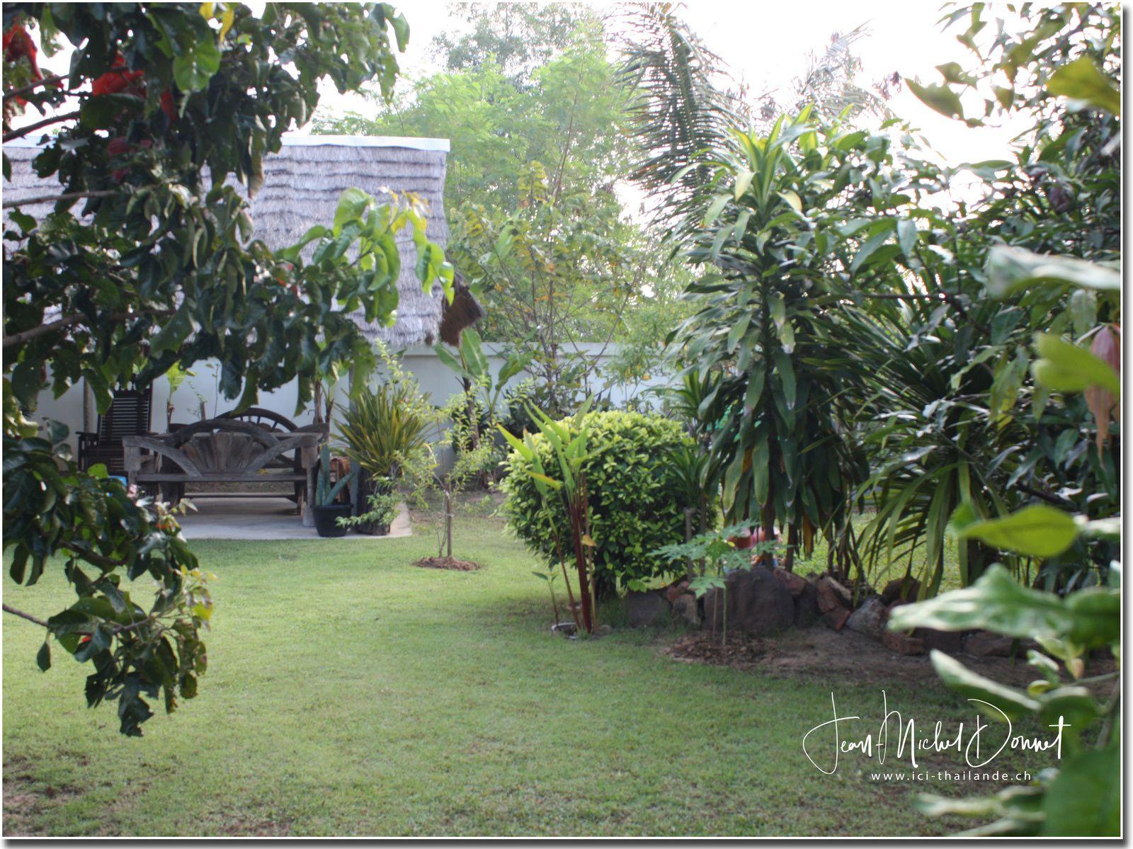 Potager et jardin (Khon Kaen, Thaïlande)
