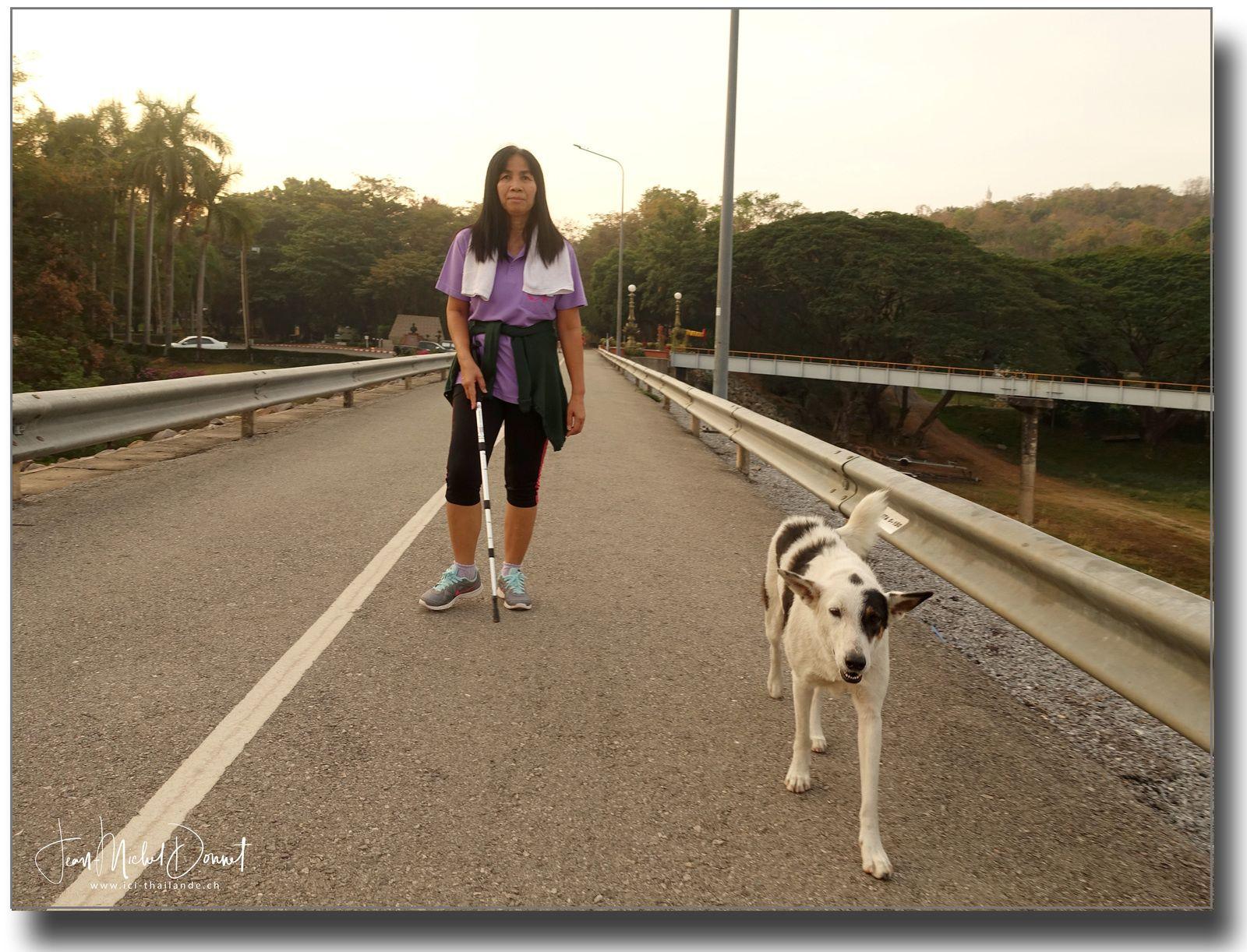 Savoir observer la nature (Thaïlande)
