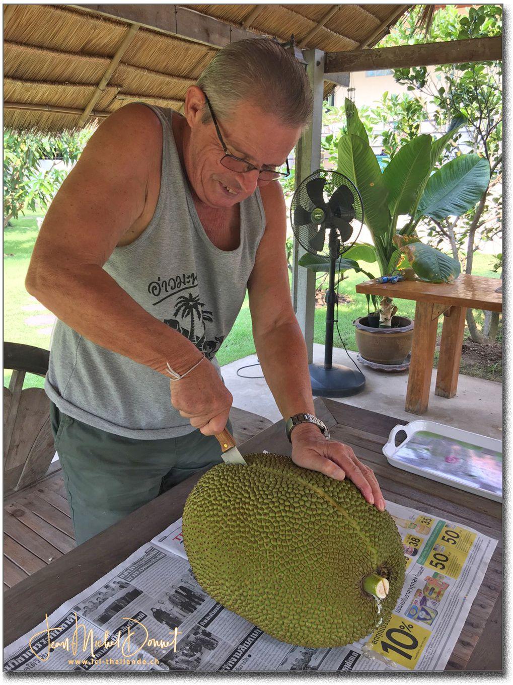Le Jaque fruit (Thaïlande)