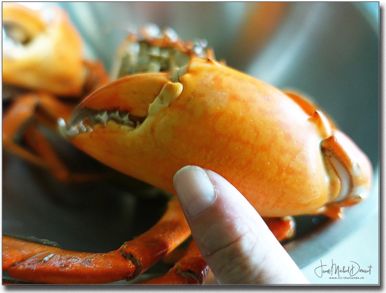 Un délicieux crabe.... (Thaïlande)