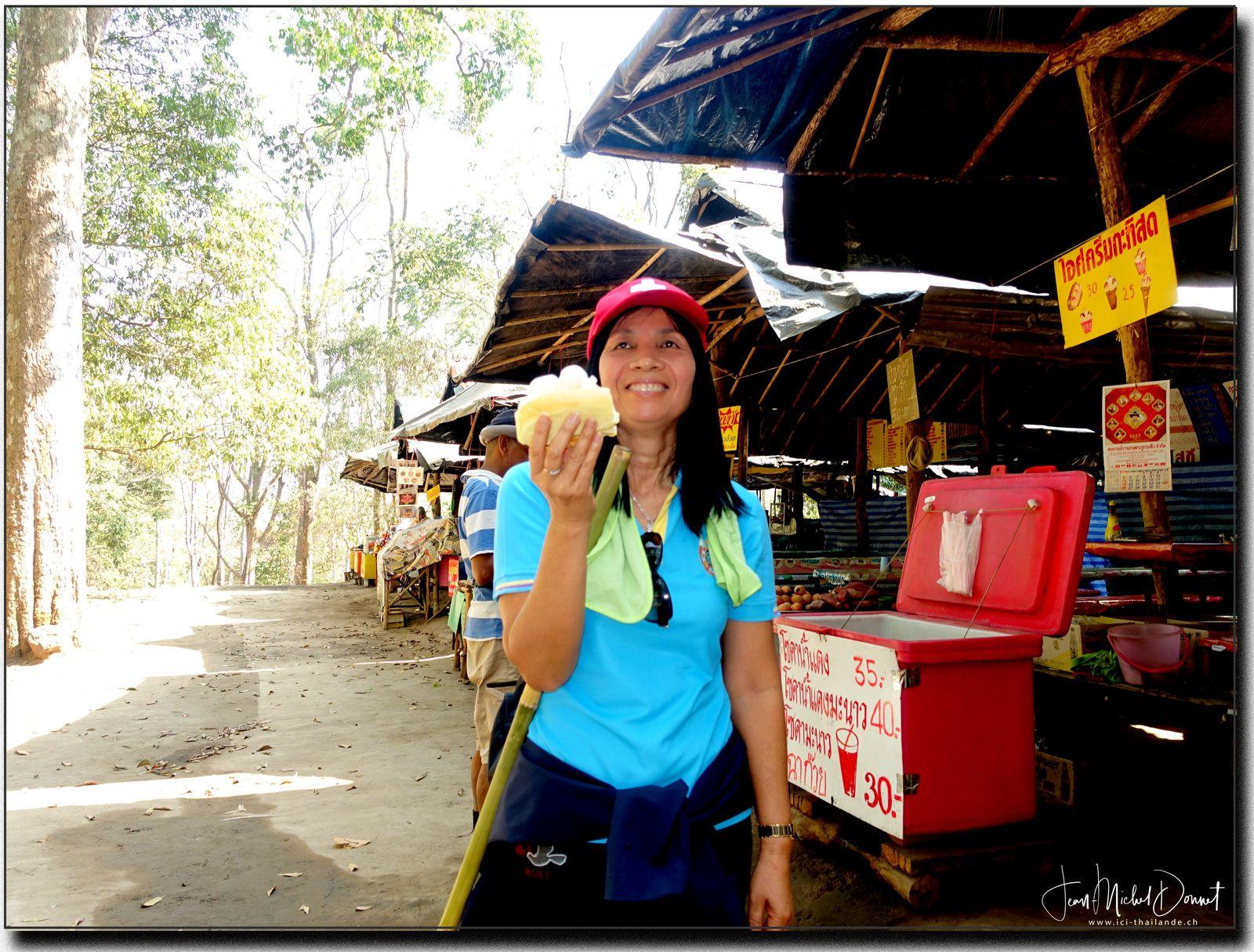 Phu Kradeung (Parc national Loei, Thaïlande)
