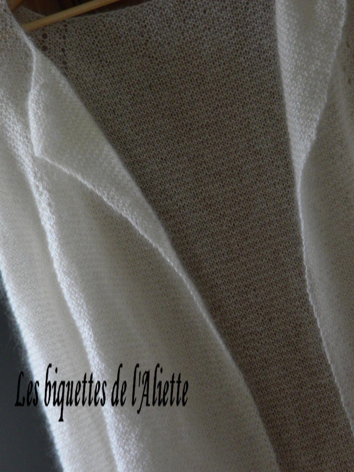 LE DOUILLET COSY N° 53 LE POINT MOUSSE AU NATUREL