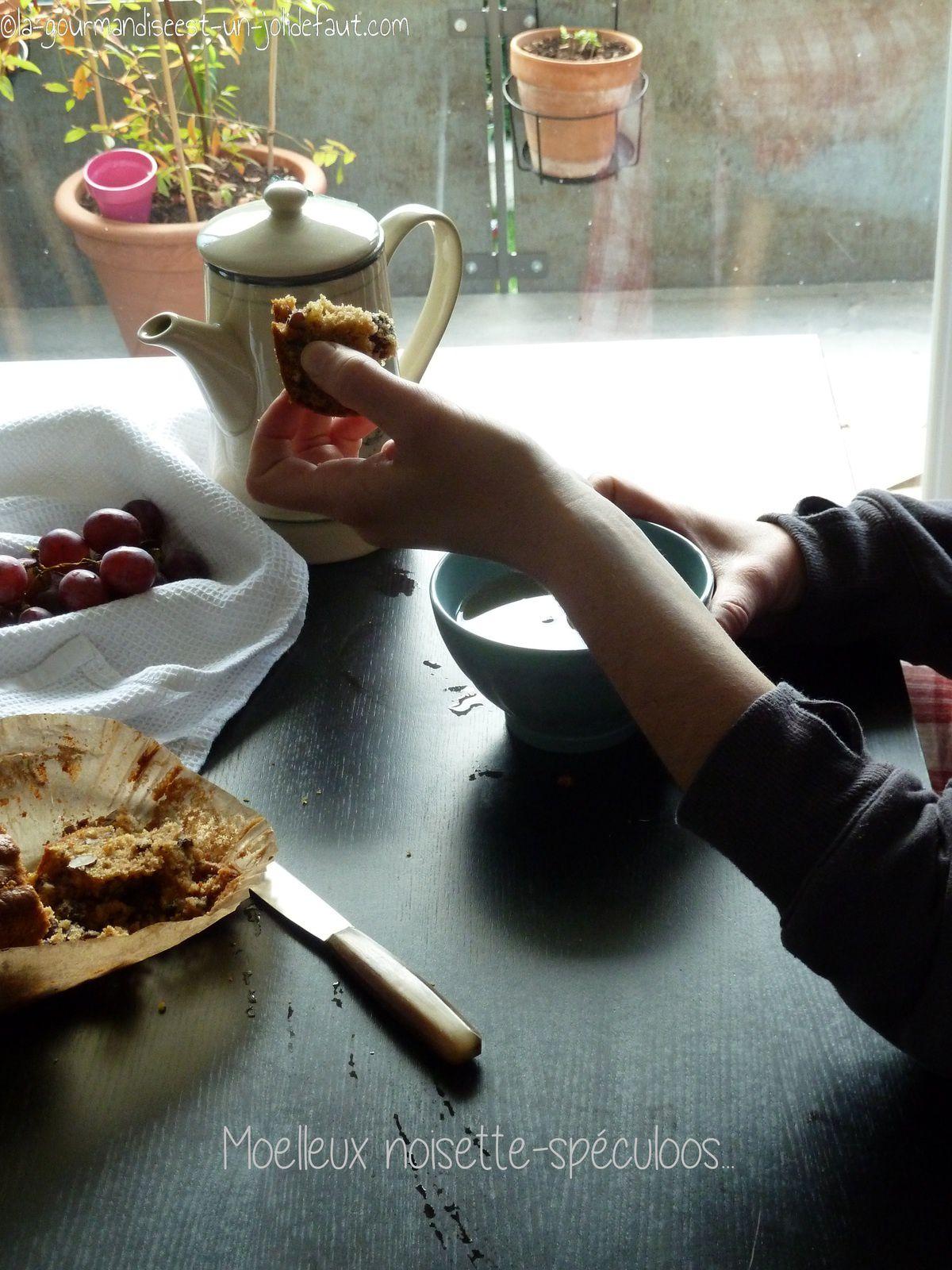 Moelleux aux noisettes et pâte de spéculoos