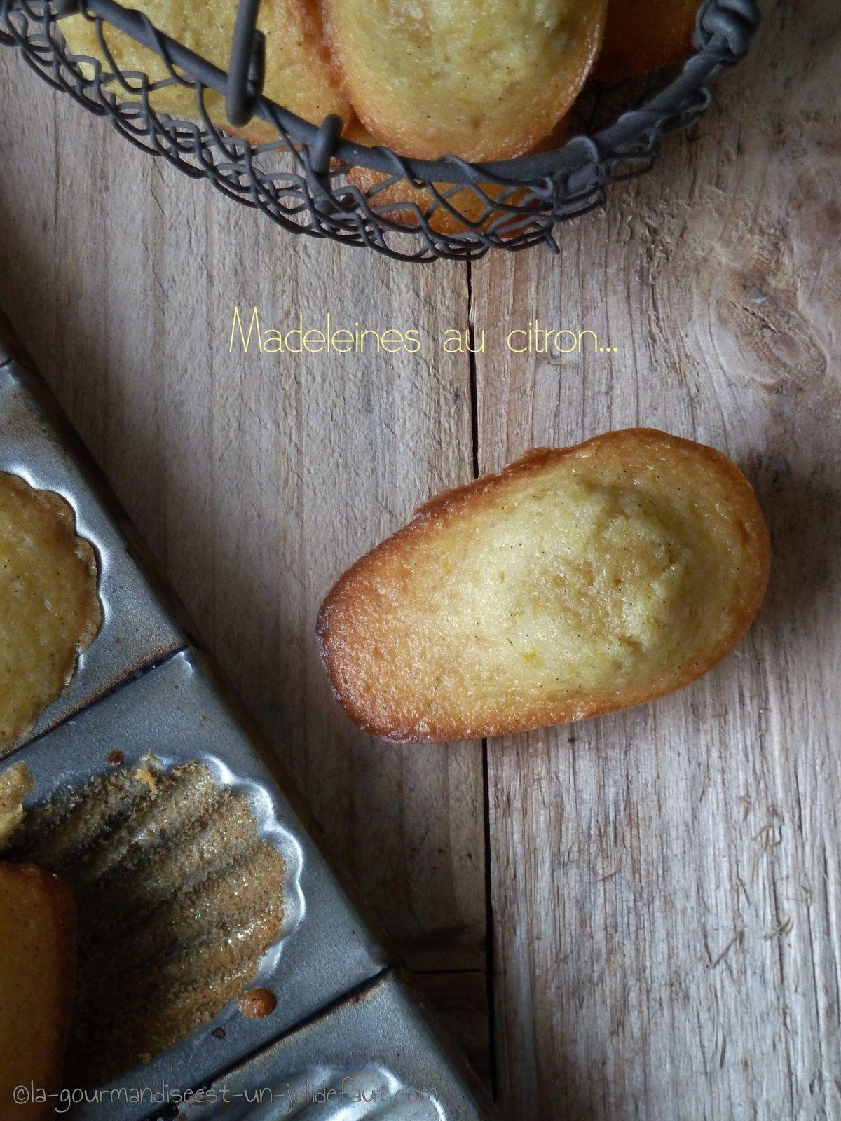 Madeleines à bosses au citron