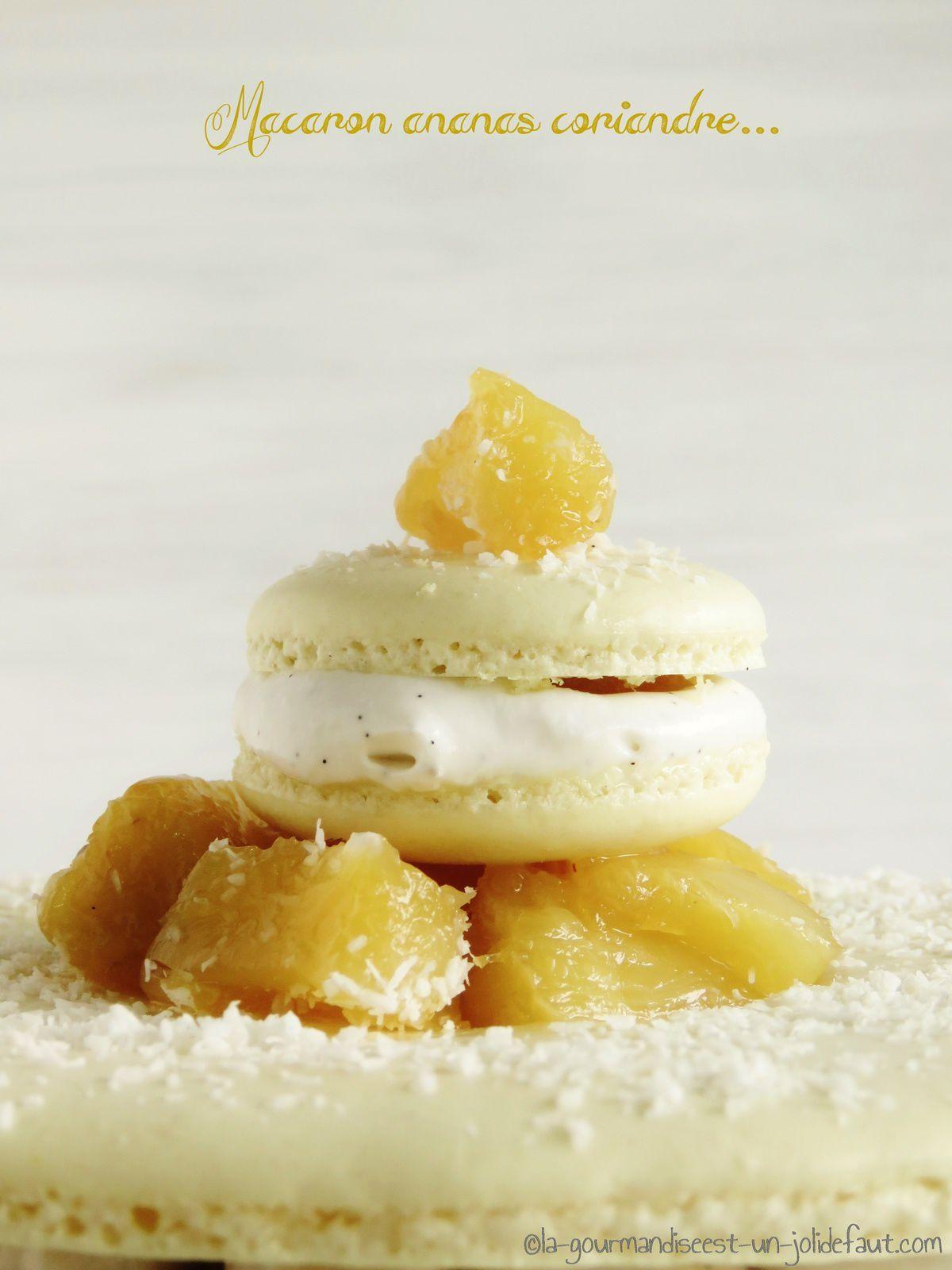 Maxi-Macaron ananas-coriandre-coco..