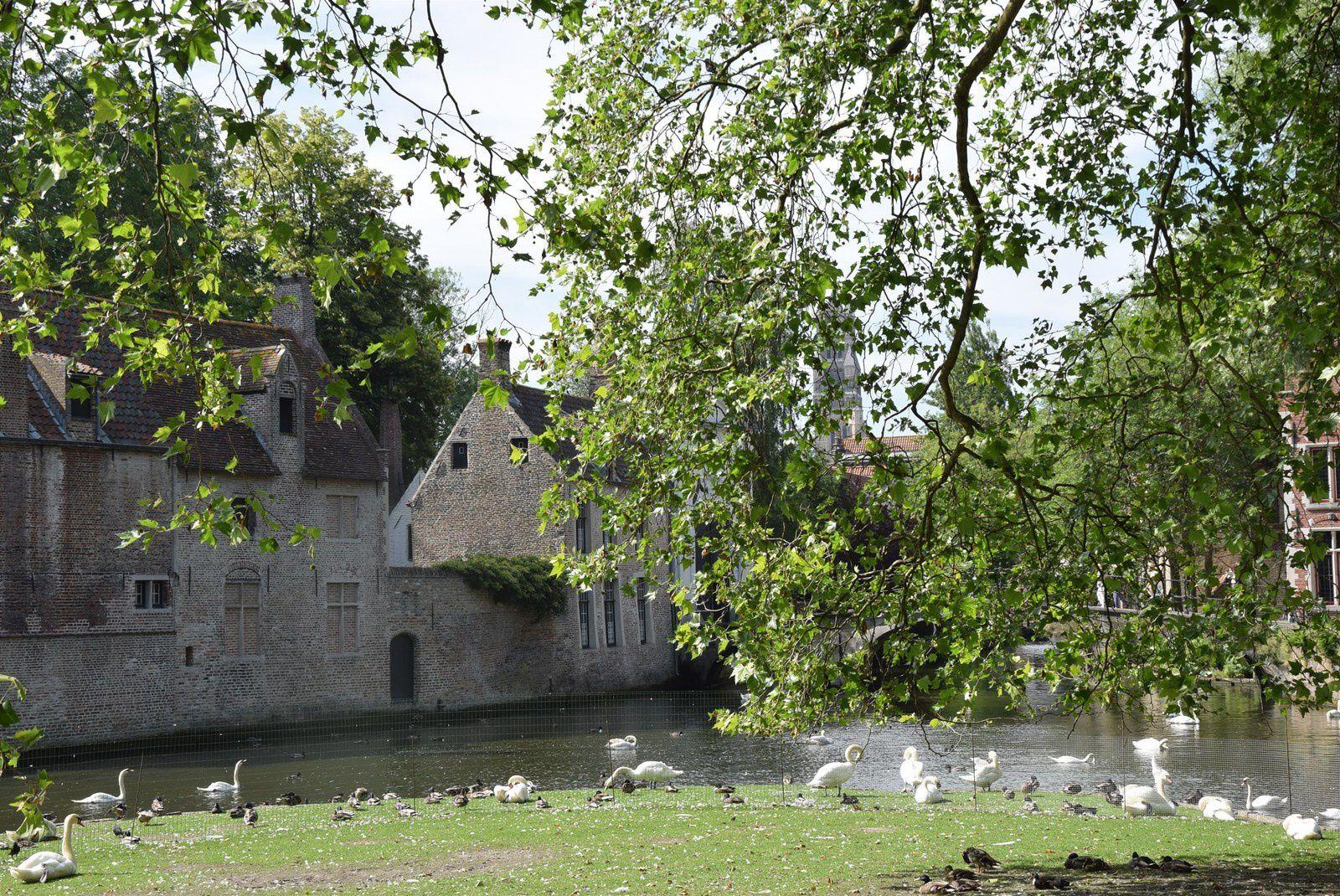 Bruges 3  : Hôpital St Jean, Canaux et Béguinage