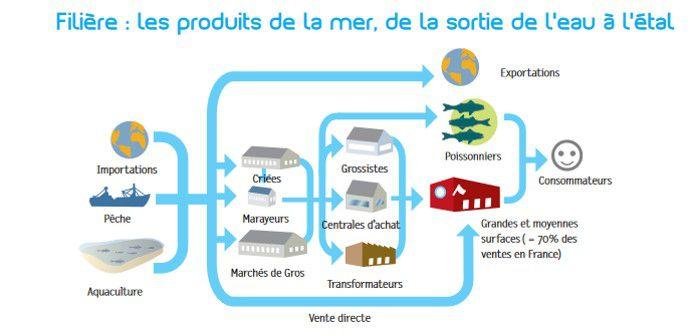 filière: les produits de la mer, de la sortie de l'eau au consommateur