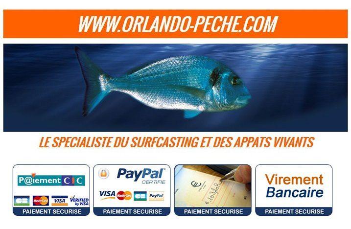 paiement sécurisé par cic ou paypal aucun numéro de carte n'ai garder après chaque achat sur le site pour votre sécurité
