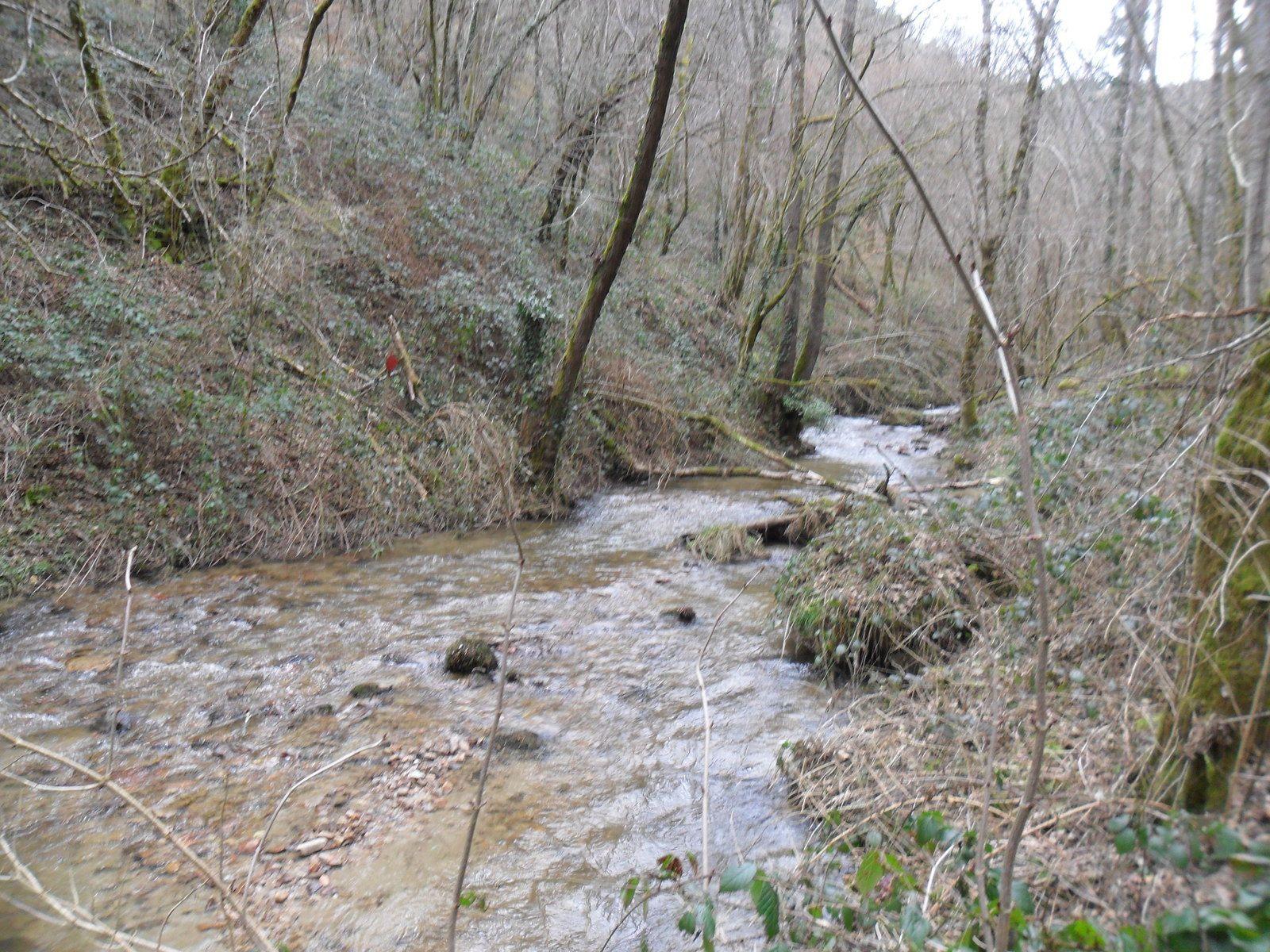 l'Amarou, ruisseau de 12 km du Sud-Ouest de la France, sous affluent de la Garonne par le Lot.