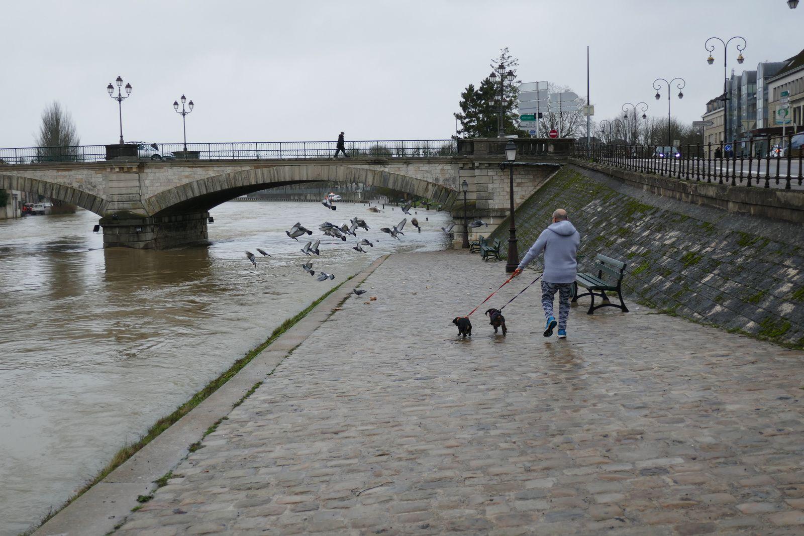 Crue de l'Yonne ville de Sens le 24 Janvier 2018