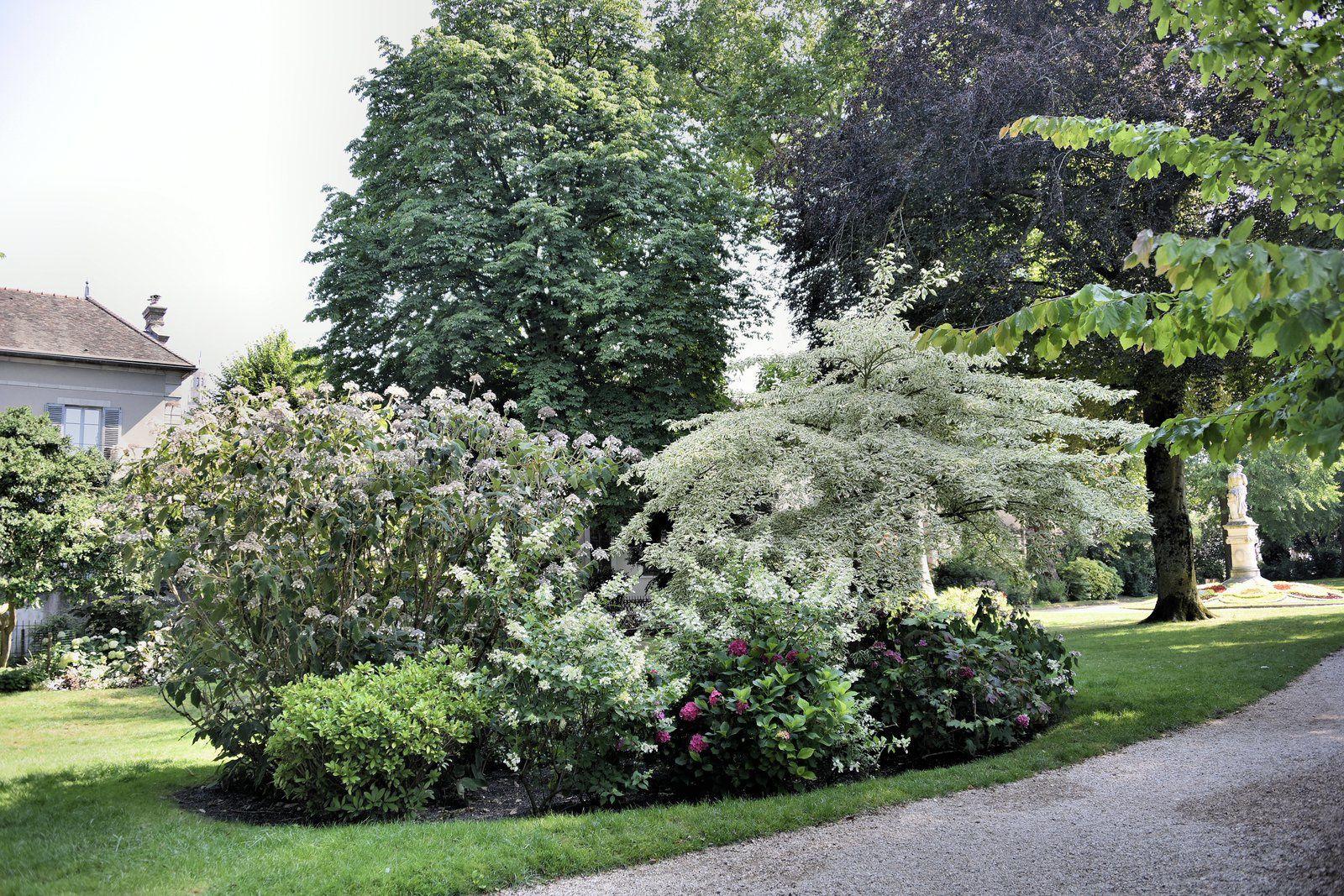 Une petite promenade en photo dans un jardin de Sens.