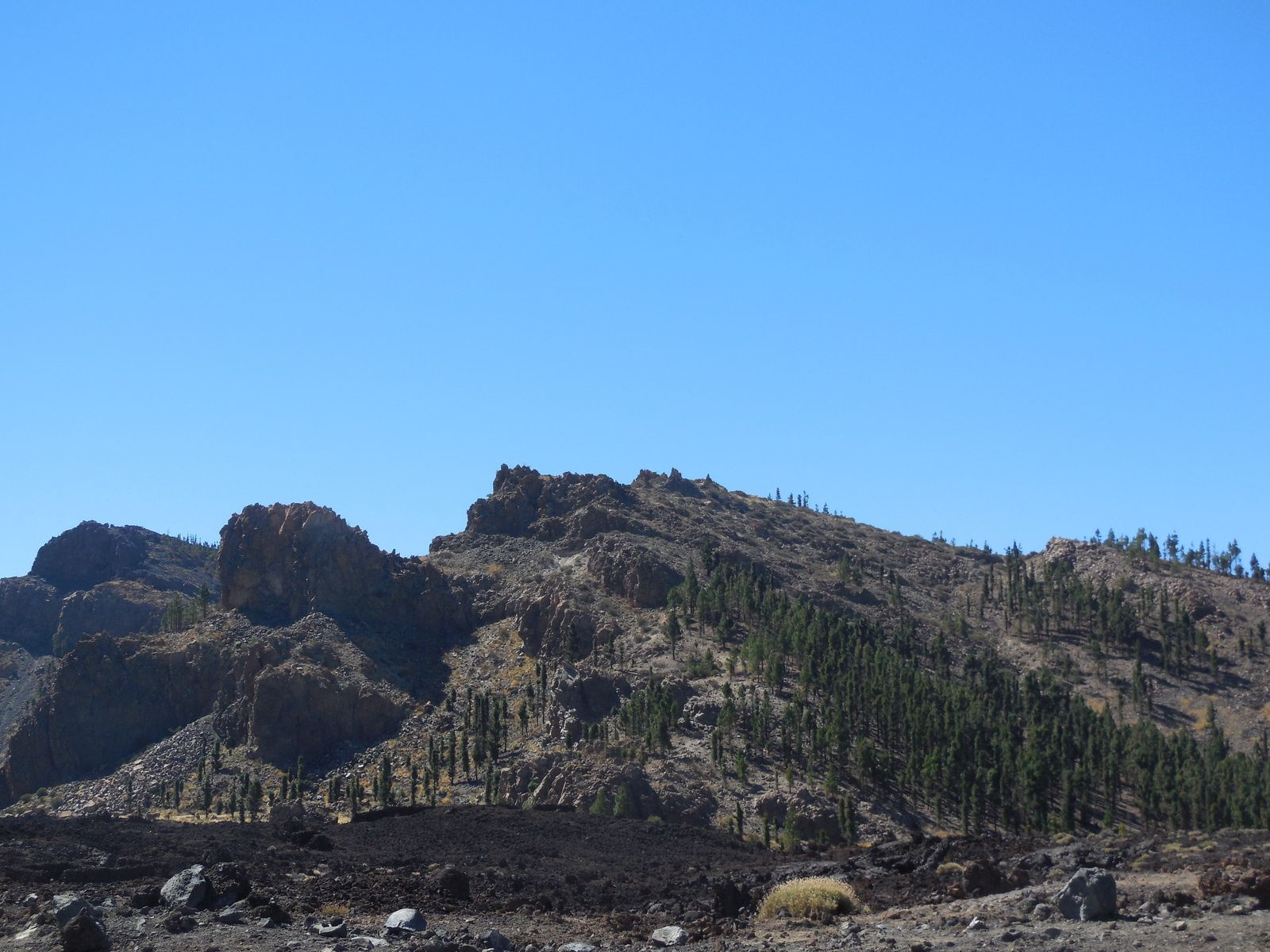 Coulées de lave solidifiées; à ce niveau, la végétation reprend le dessus...