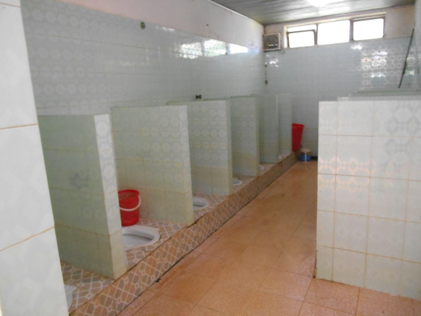 Les toilettes dames avec un original face à face.