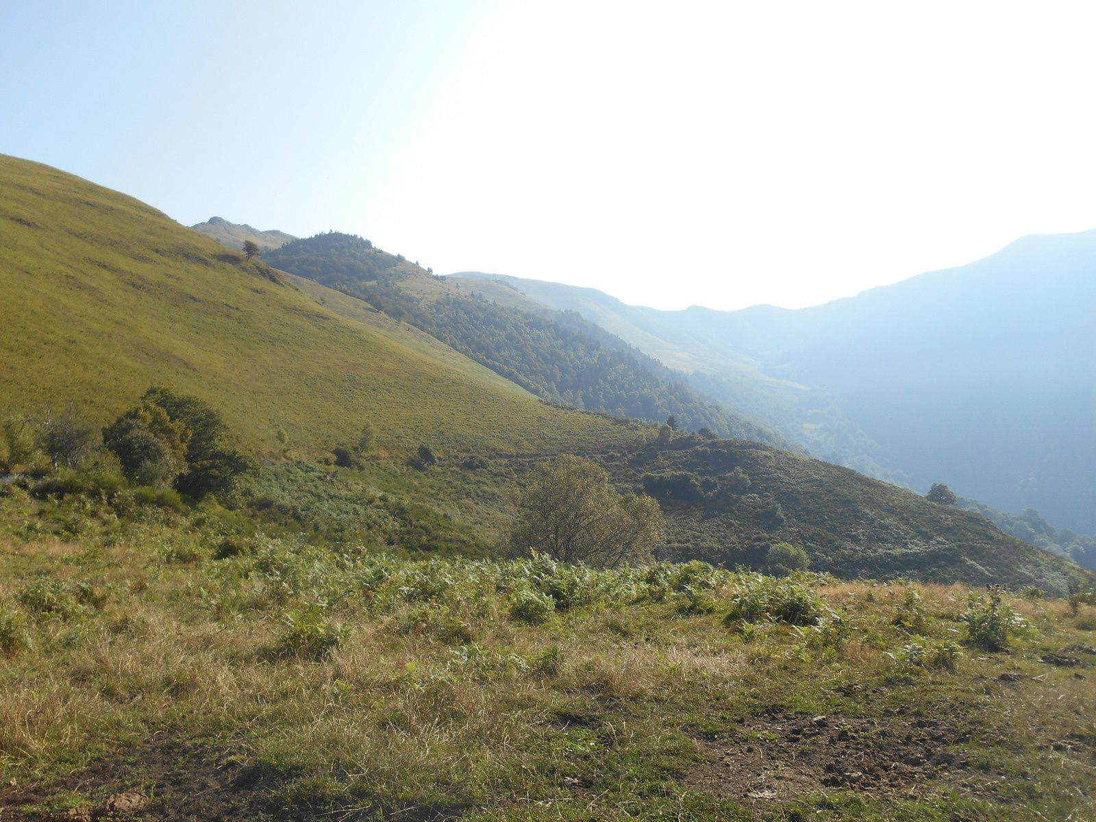 Une boucle au départ du village d'Artigue (Luchonnais)