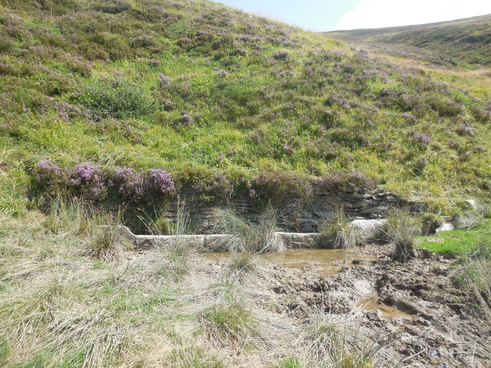Après ce sentier à flanc de montagne, nous arrivons à la fontaine de Saunères, lieu de notre pique-nique.