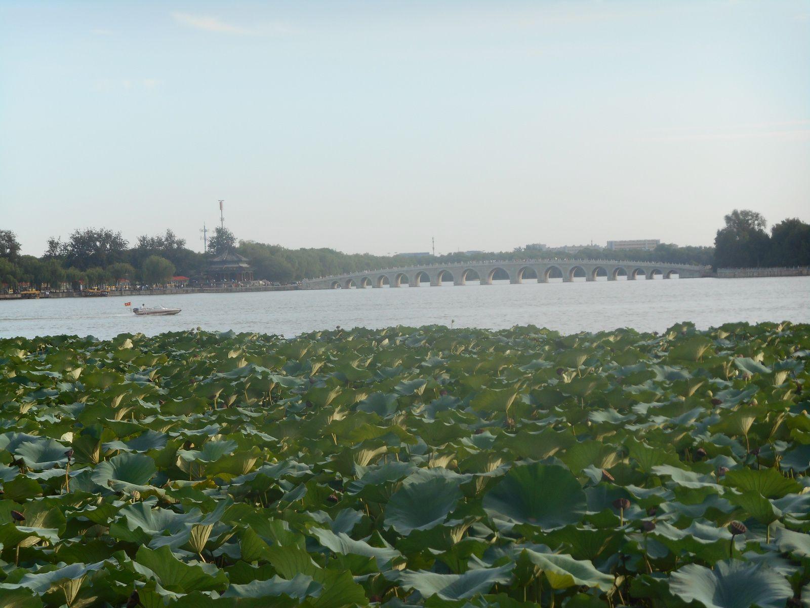 Le pont aux 17 arches sur le lac Kunming (le lac de la Tranquilité).