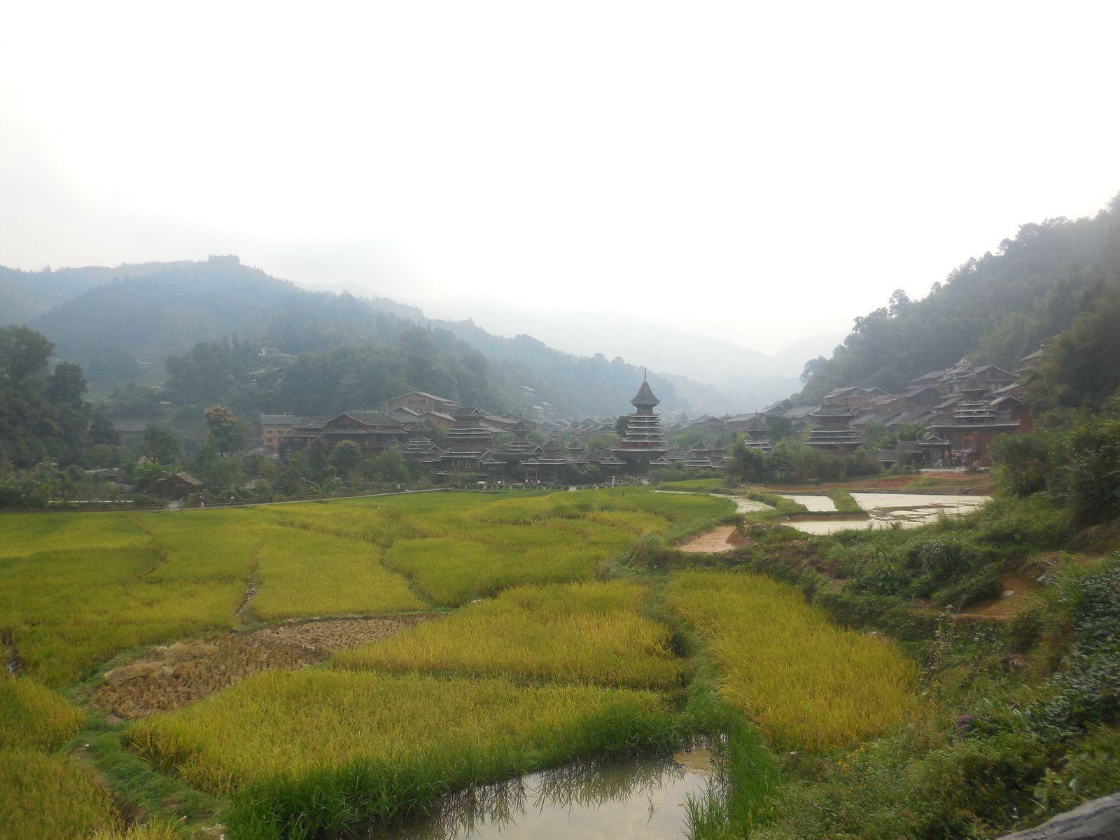 Village entouré de rizières...