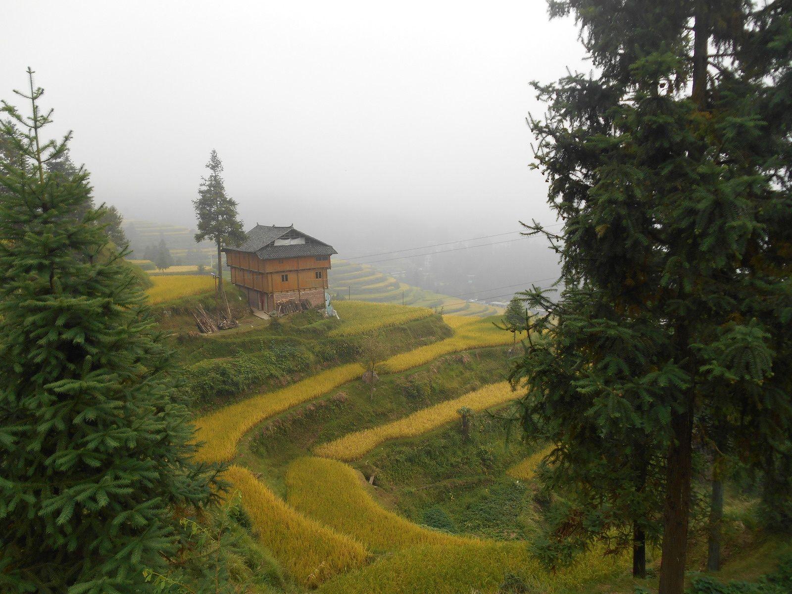 Chine: jour 11- Les rizières en terrasse de Tang'an.