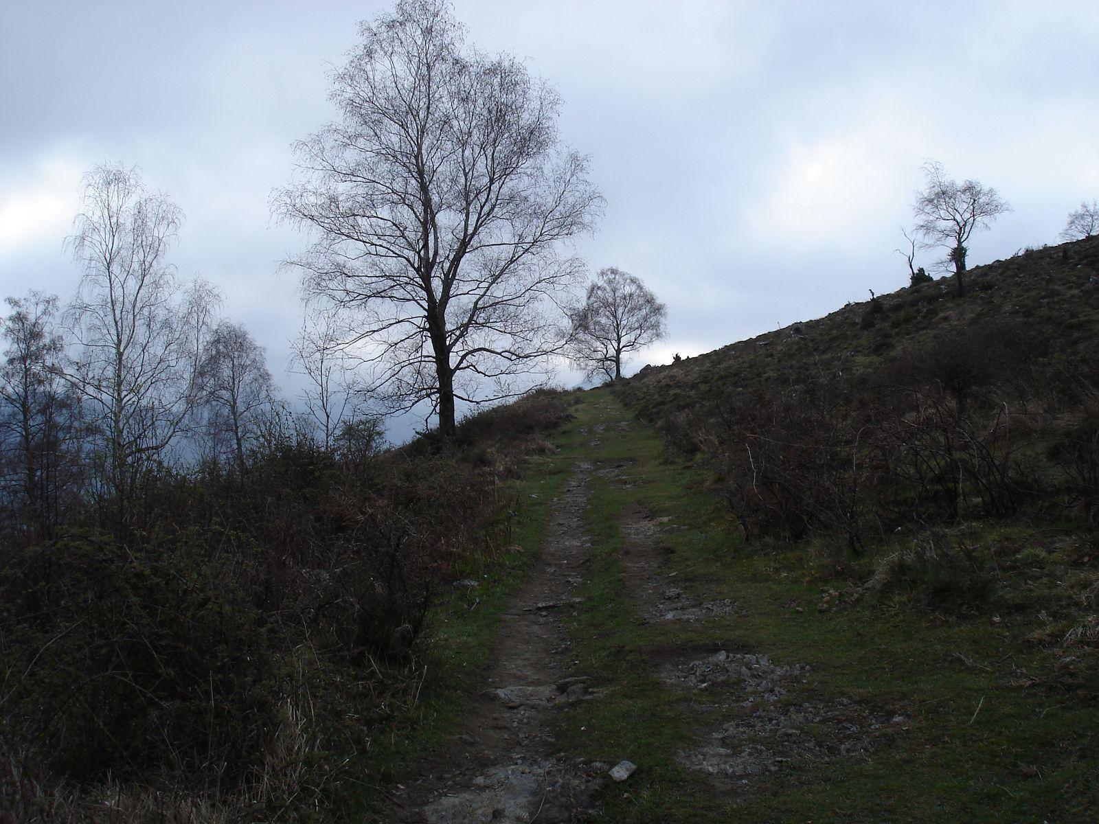 Le Monné ( 1259 m )