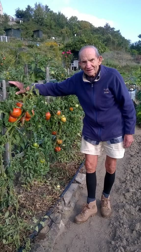 Les belles tomates de Pierre