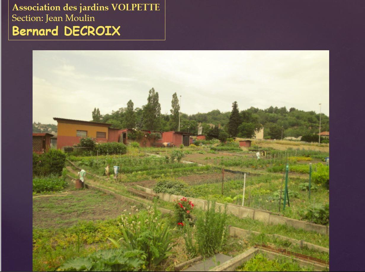Concours de Jardins fleuris de Saint-Etienne 2015, de beaux jardins malgré la canicule