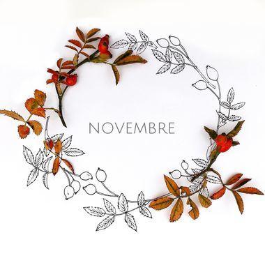 Au jardin en novembre