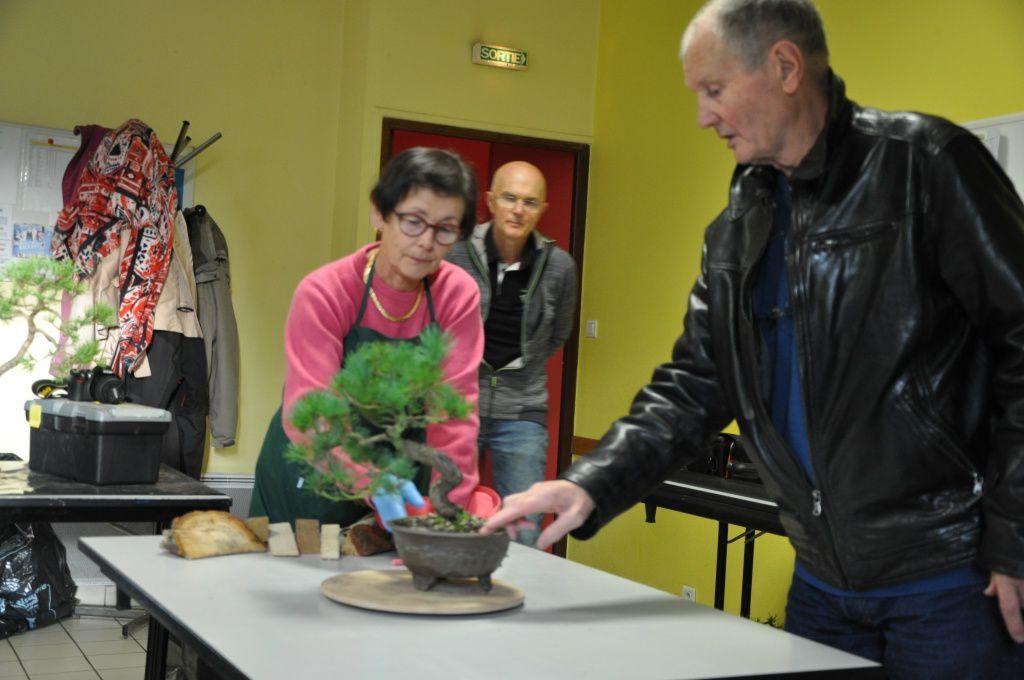 Nous étions nombreux ce week-end et beaucoup d'arbre à travailler sous les bons conseils de Jean-Bernard encore un grand merci à toi