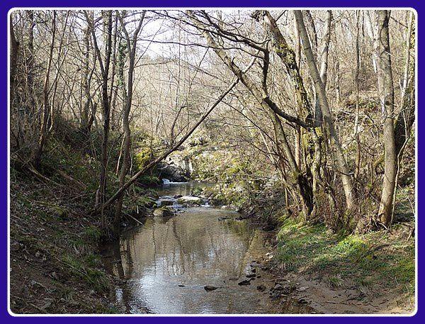 Les petits ruisseaux font.....