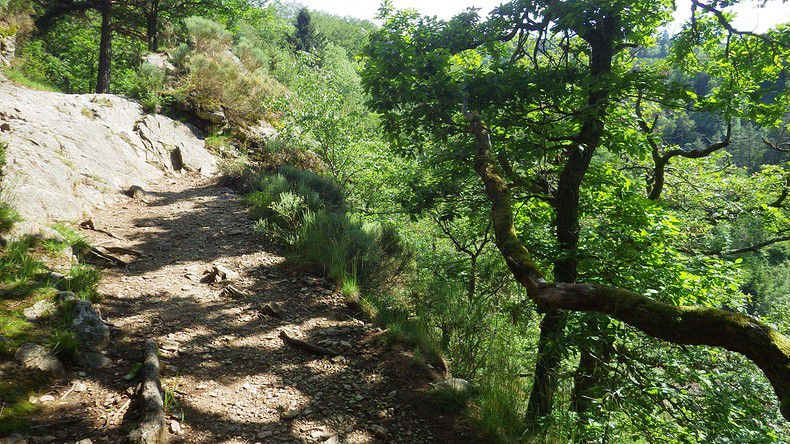 Sentiers du Pilat: le 23