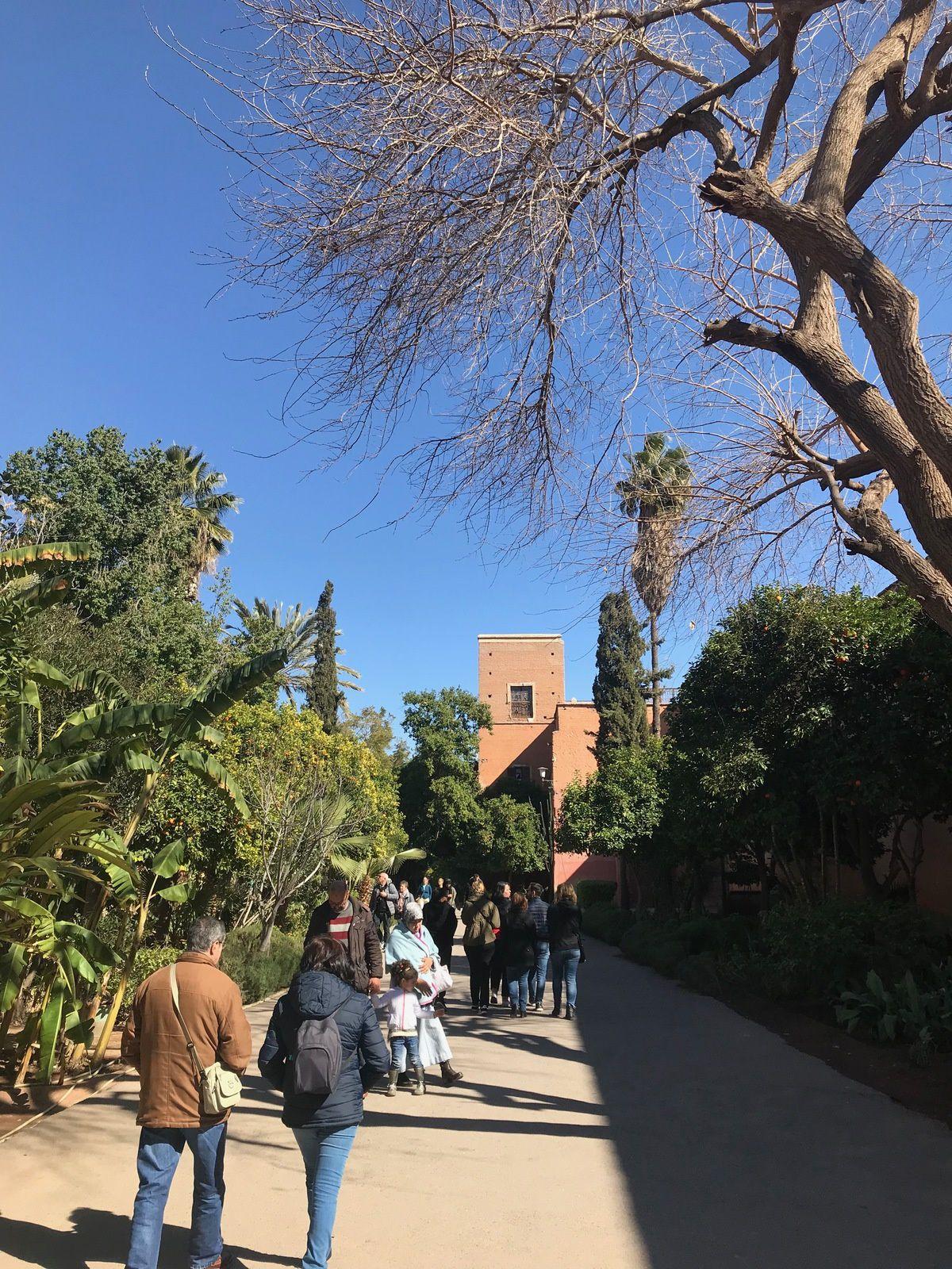 Marrakech #3