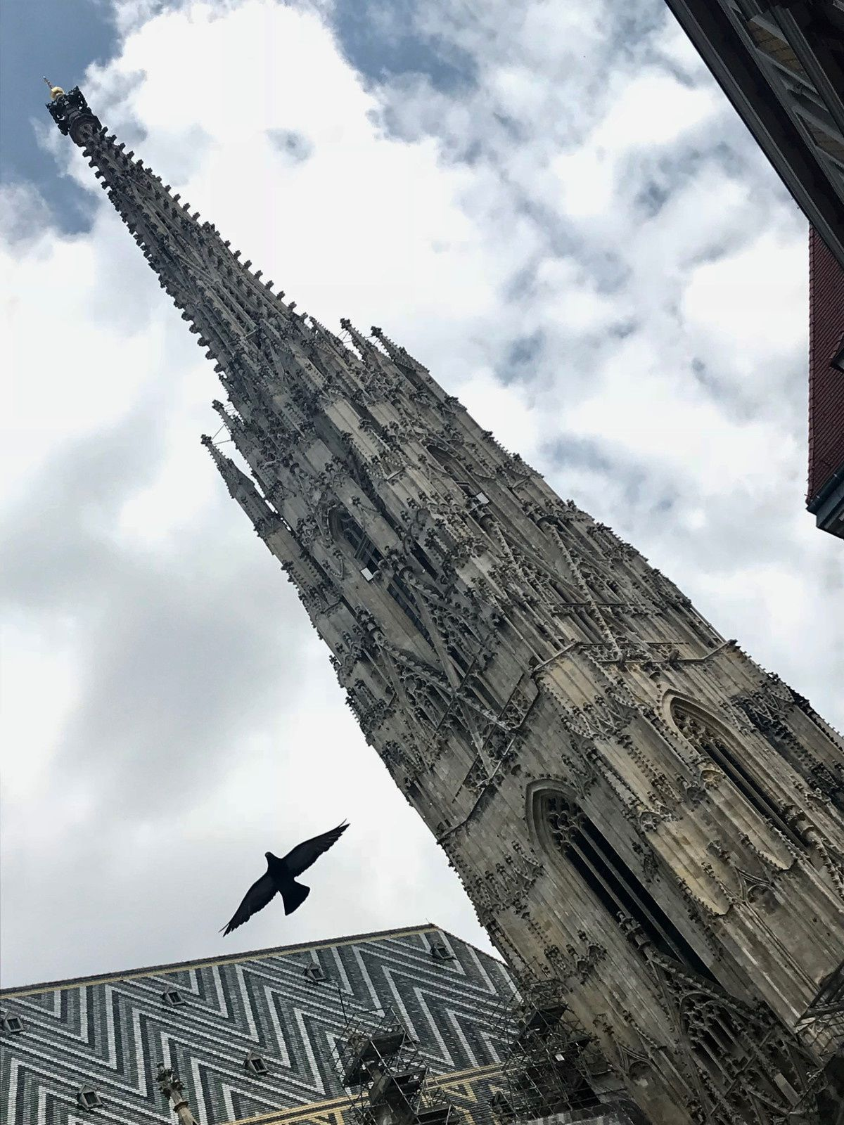Week-end à Vienne #4