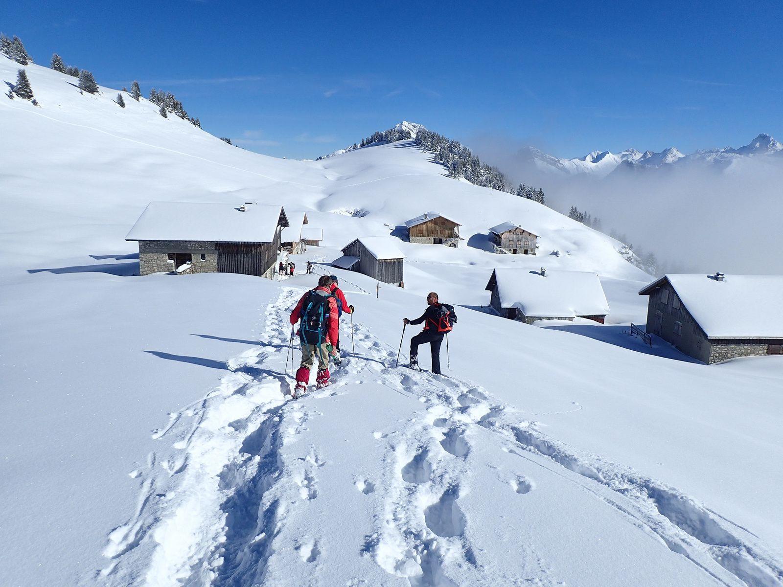 Montagne des Auges: Depuis le Plateau des Glières (version 2016)