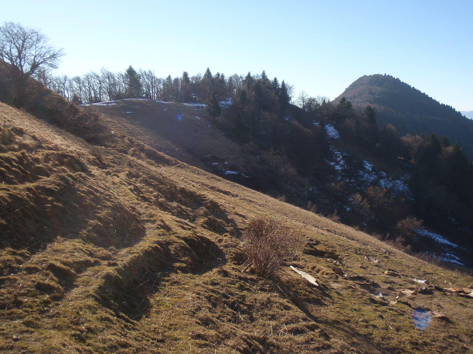 Pointe de la Galoppaz>Pic de la Sauge: En boucle depuis le Fournet 1/2