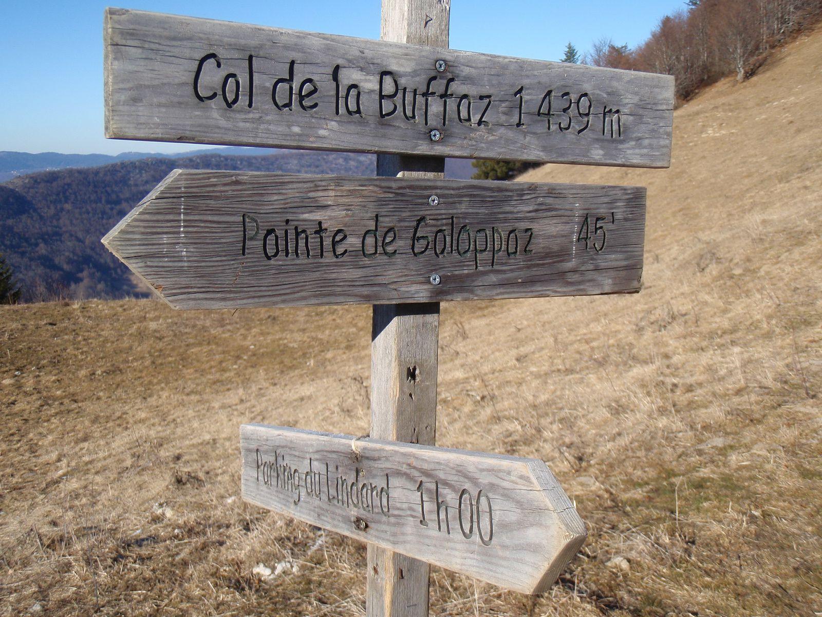 Pointe de la Galoppaz>Pic de la Sauge: En boucle depuis le Fournet 2/2